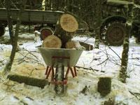 Schubkarre voll Holz